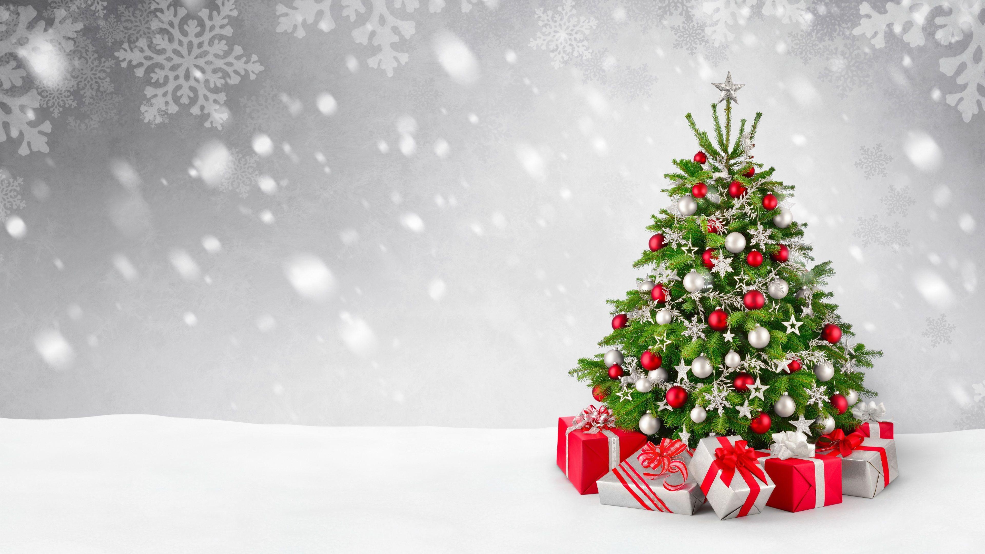 3840x2160 Christmas Tree 4k Desktop Background Christmas Tree Wallpaper Christmas Tree Decorations Wallpaper Christmas Tree Background