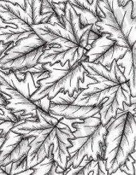 Heartfelt Creations Oak Leaf Background Stamp