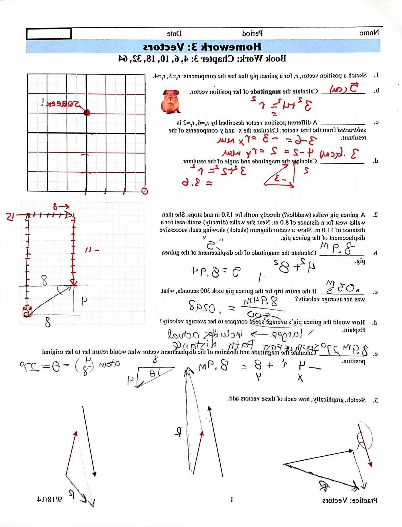 6 Classified Composition Of Functions Worksheet Answers