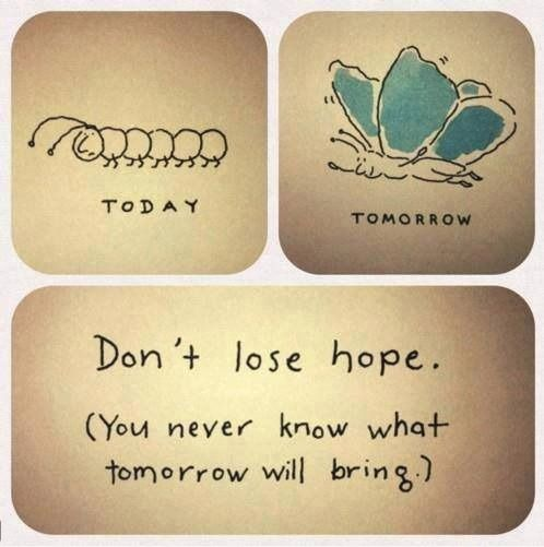 Don't lose hope. You never know what tomorrow will bring. #inspiration