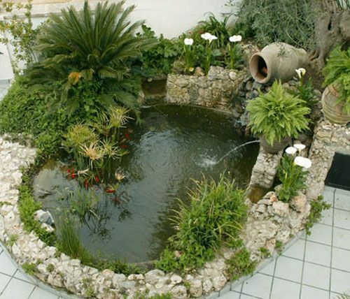 Jardines peque os con estanque jardin era pinterest for Jardines pequenos con luces