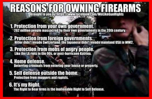 Reasons to own Firearms