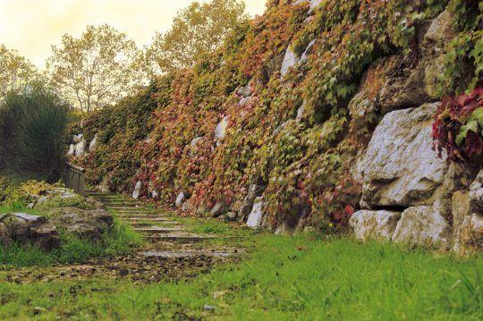 Sant Pau d'Ordal  #tardor #autumn #escales #steps #nature #natura #orange #taronja #igerspenedes #landscape #paisatge #penedes #subirats #photo #weekend #igers #igerscatalunya #catalunya #catalonia #canon #70d #canon70d