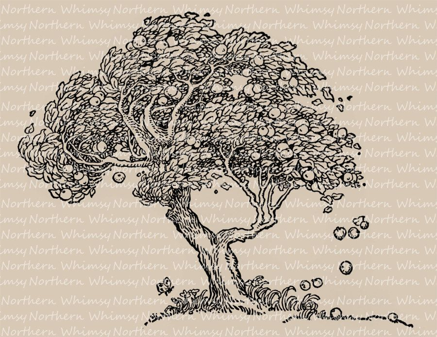 Old apple tree illustration vintage clip art image autumn old apple tree illustration vintage clip art image autumn digital stamp printable transfer graphic instant download cu ok by northernwhimsyimage thecheapjerseys Gallery