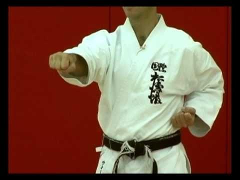 Basic Karate Punches Chokuzuki Straight Punch Karate Shotokan Shotokan Karate