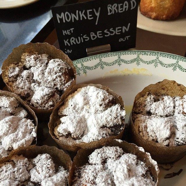 Monkey Bread!