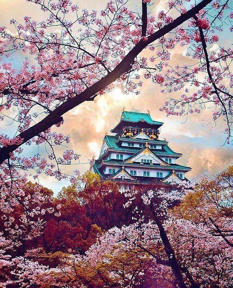 Osaca Castle, Japan