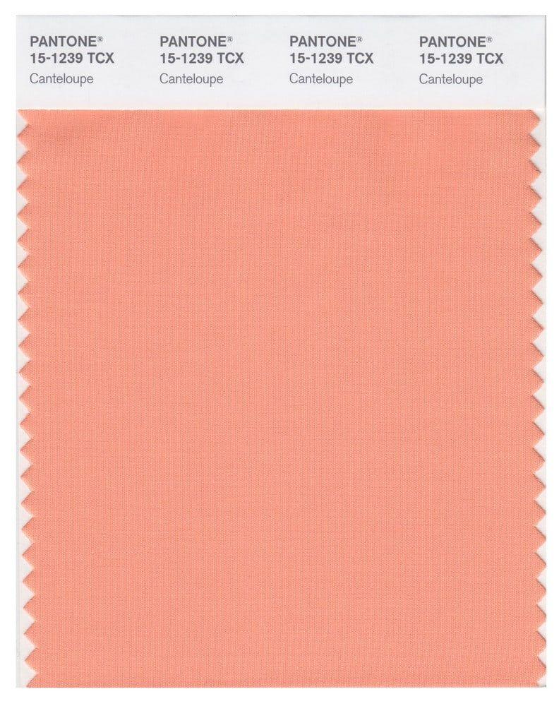 WGSN Color Trend Report 2020, Color Palette Predictions