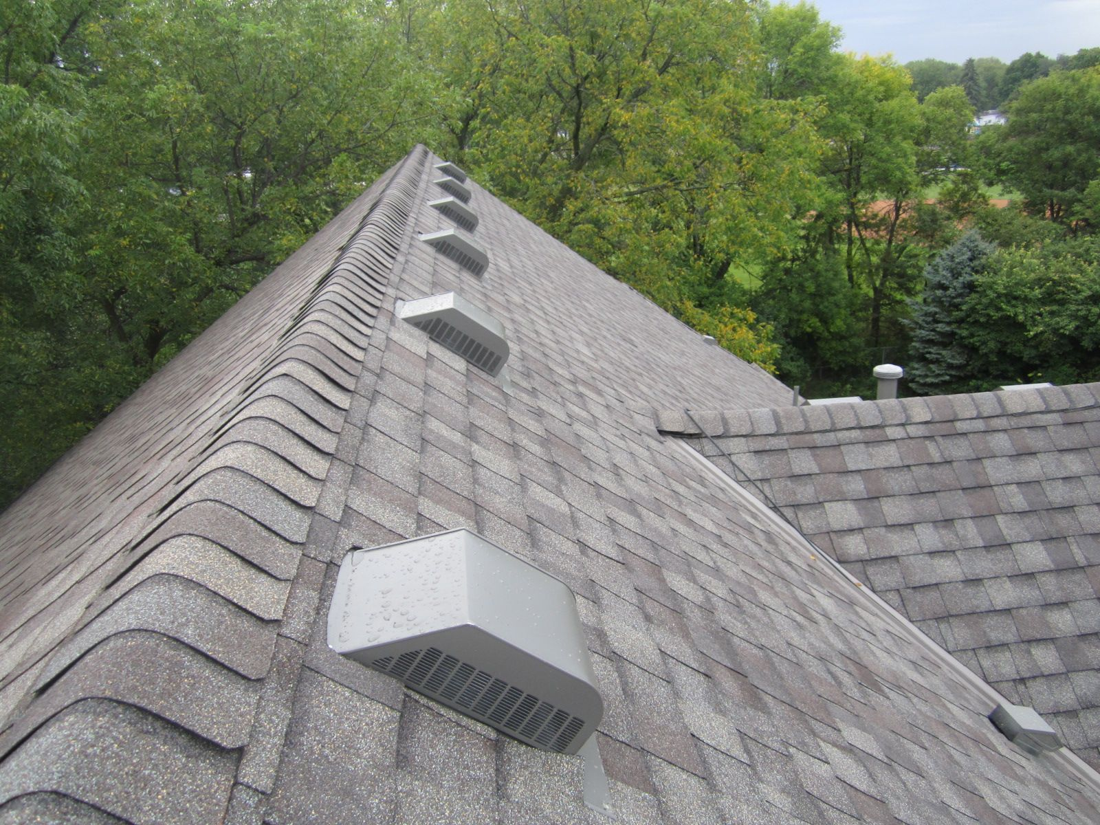 asphalt shingle roof in plymouth mn certainteed weathered wood