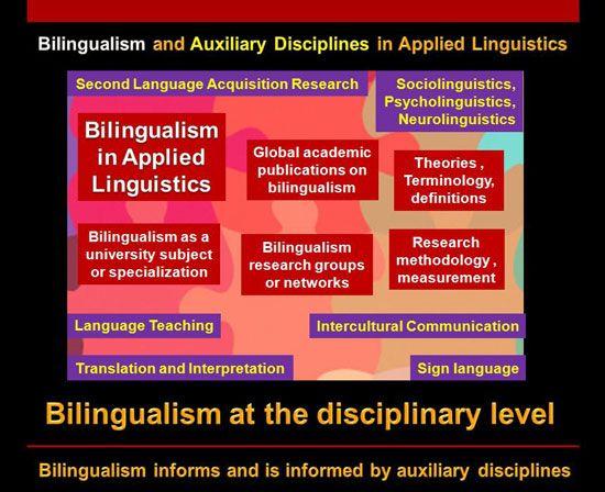 Taxonomy Of Bilingualism 3 School And Academic Level Paper Essay Bilingual Education Language Teaching