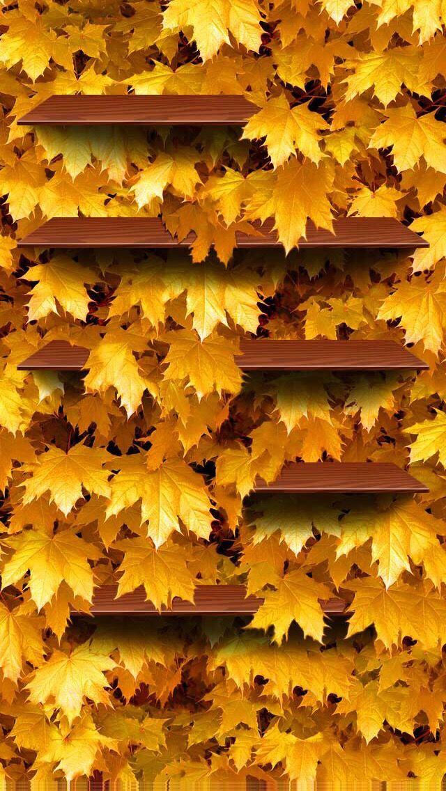 Wallpaper Iphone Autumn Leaf Leaves Wallpaper Iphone Iphone Wallpaper Iphone Lockscreen Wallpaper Autumn leaves wallpaper hd