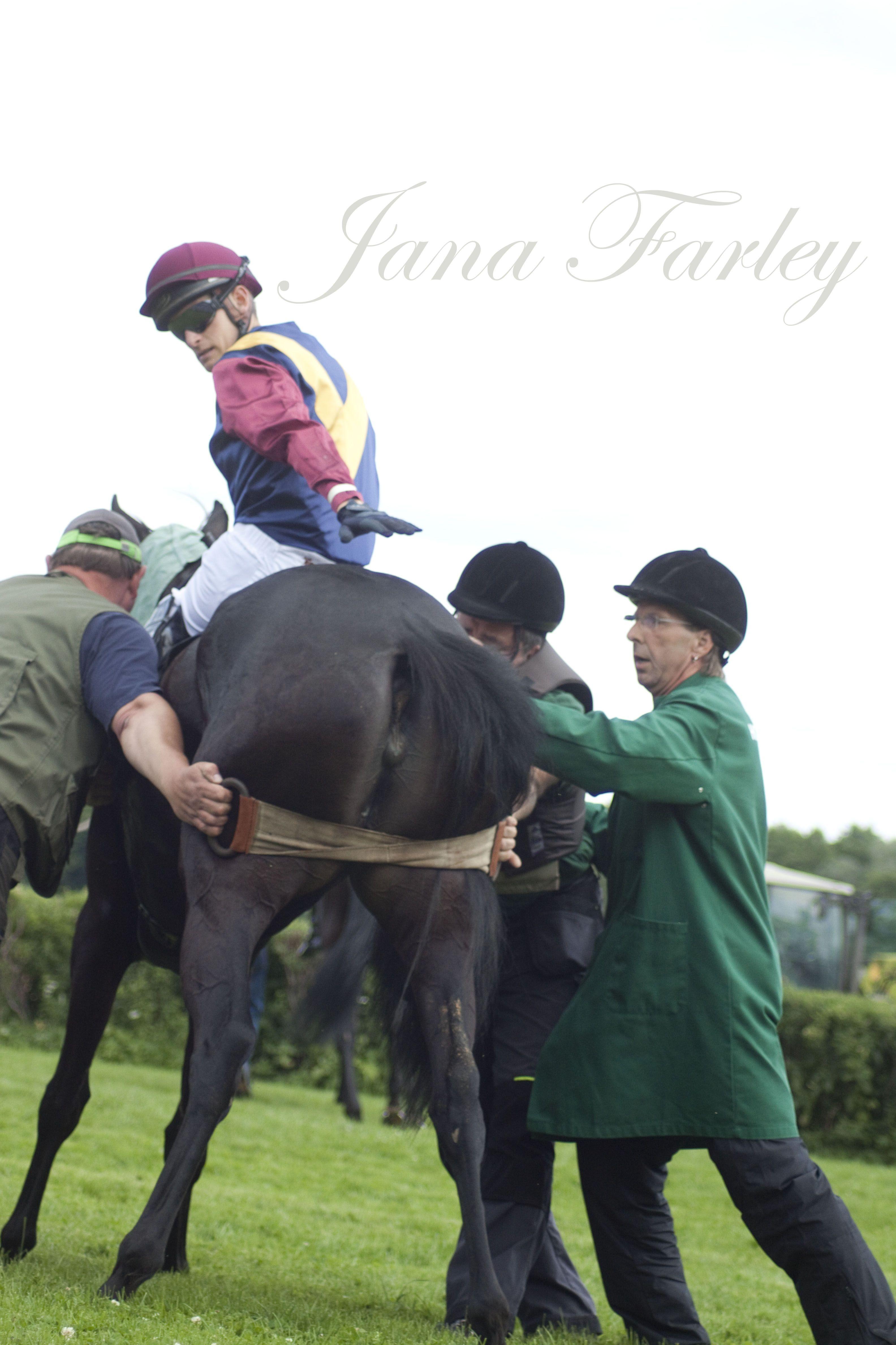 #horseracing #horse #race #berlinfotografin