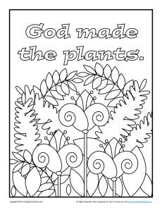 Bible Coloring Pages For Kids God Made The Plants Bible Coloring Pages Creation Coloring Pages Preschool Coloring Pages