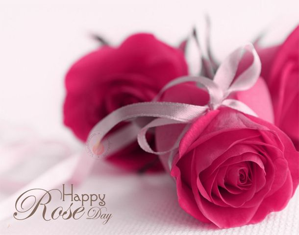 Happy Rose Day Date 7th February The Couples Are Busy In