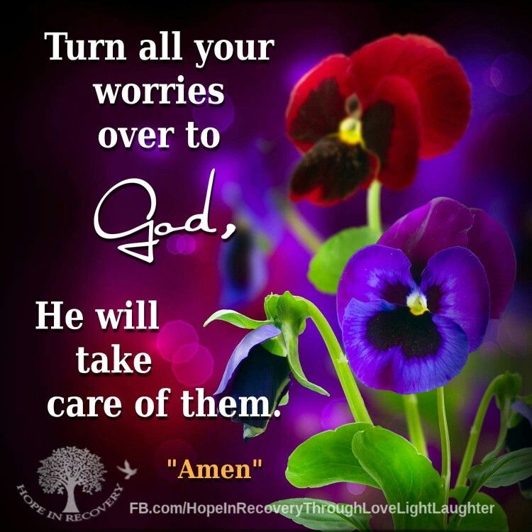 Worries | Bible quotes, No worries, English quotes