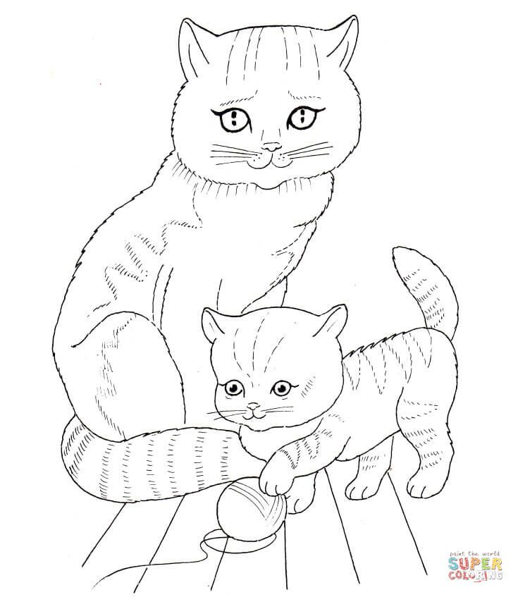 Cat Mother And Kitten Super Coloring Cat Coloring Page Baby