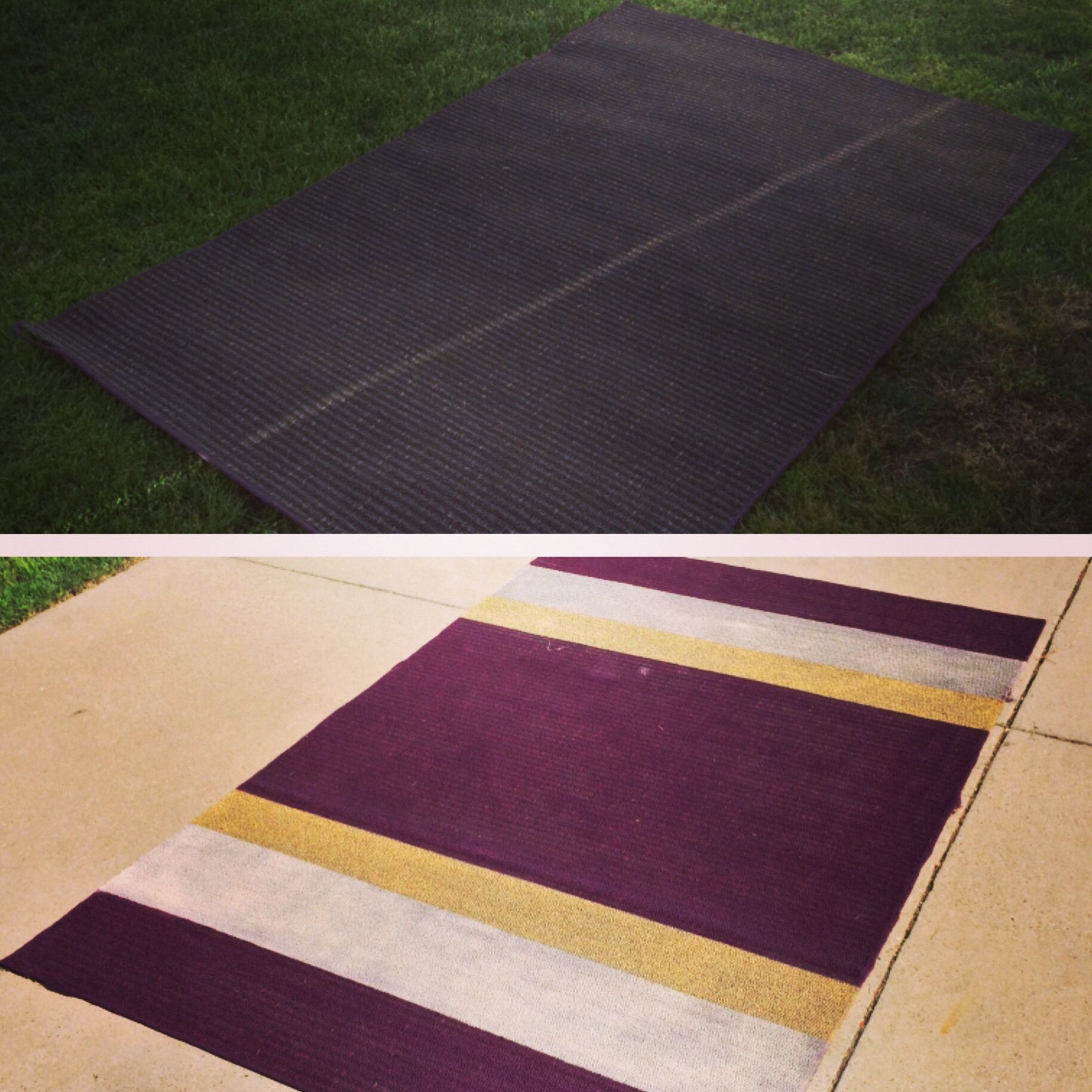took a 5 rug from craigslist spray painted the whole thing with