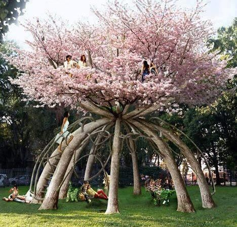 """""""Cubby Tree"""" - a treehouse made from actual trees! Terrific!"""