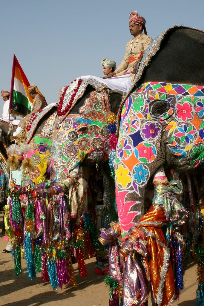 Elephant Festival Jaipur 7 | Flickr - Photo Sharing!