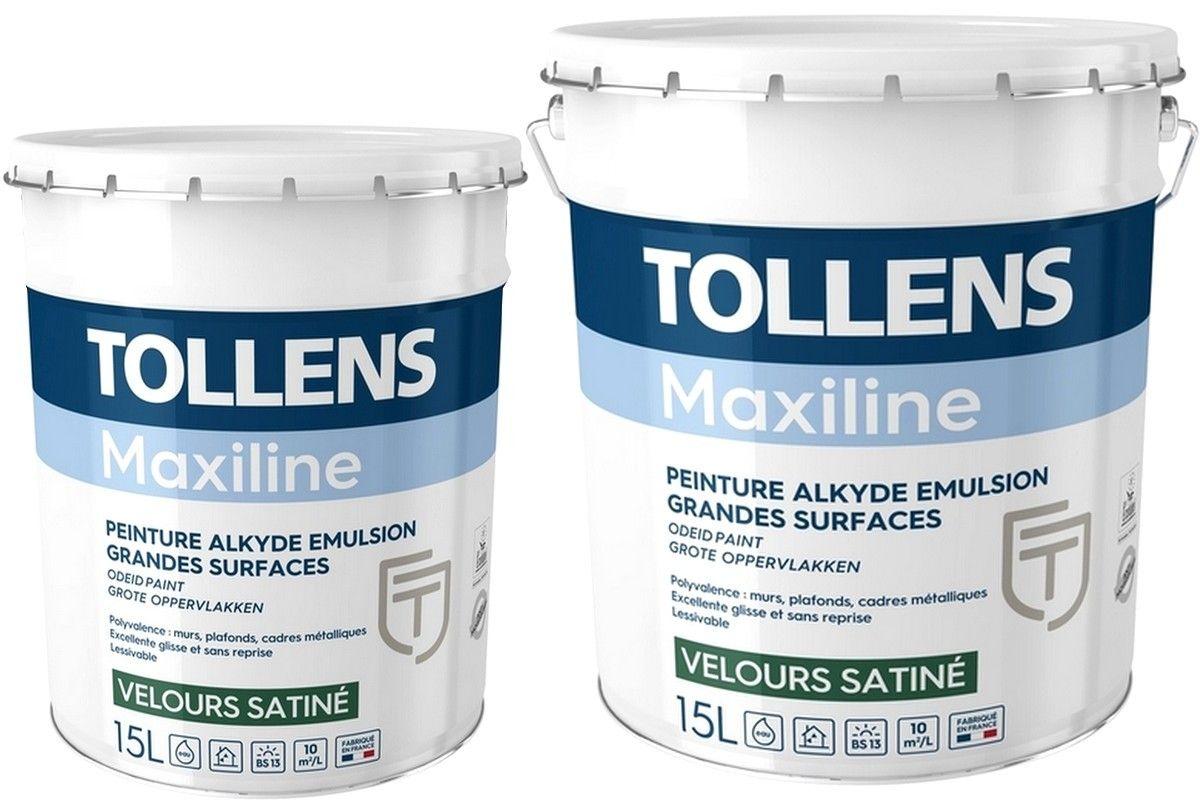 Peinture Tollens Professionnelle Maxiline Velours Satine En 2020 Peinture Tollens Peinture Mur Et Plafond Peinture Professionnelle