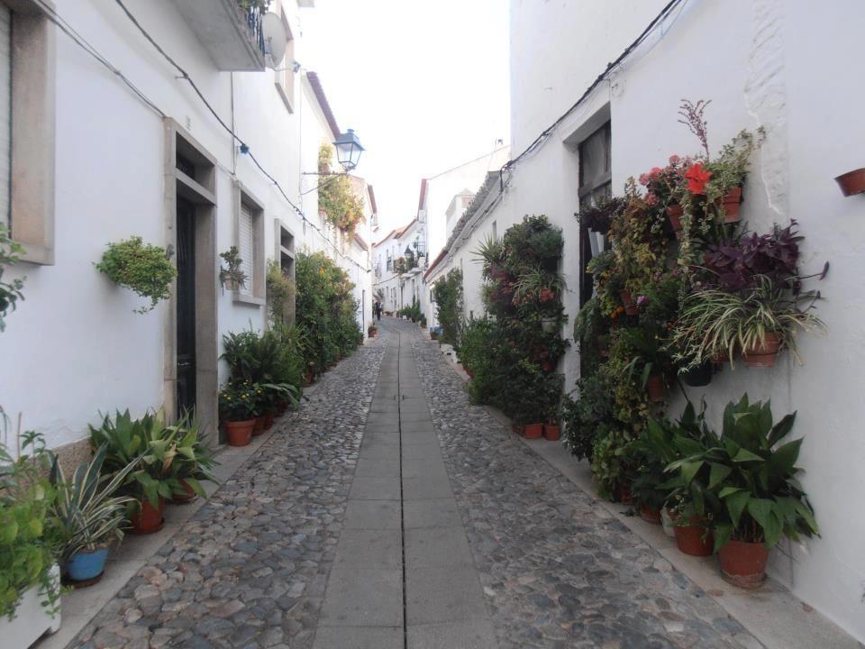 Rua das Flores - Moura