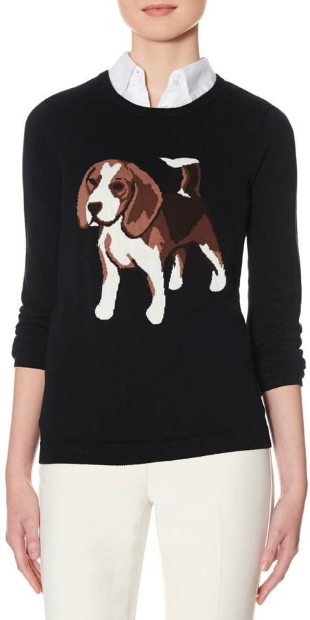 Intarsia Beagle Dog Sweater Too Cute For Words And On Sale