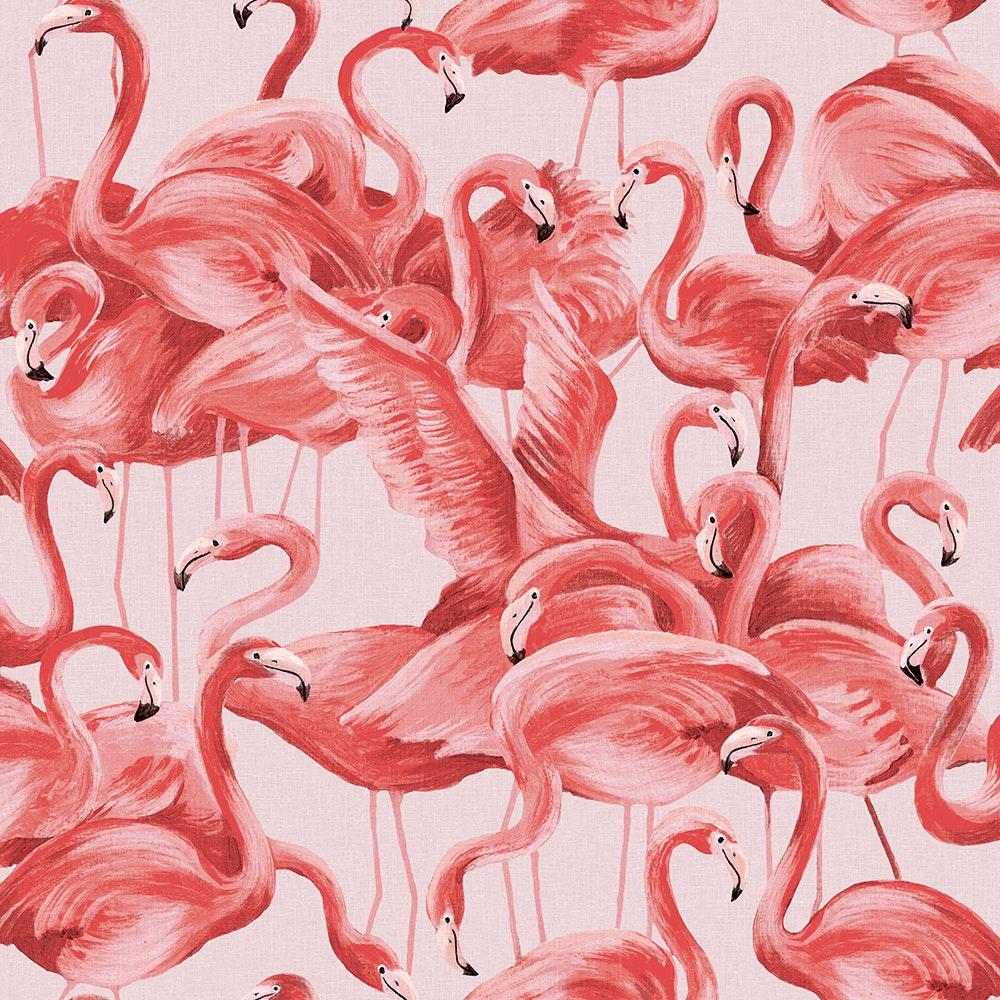 Undefined Flamingo Wallpaper Animal Print Wallpaper Peel And Stick Wallpaper