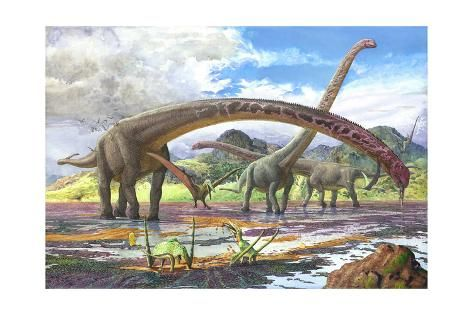 'Mamenchisaurus Feeding on Brown Algae at Low Tide' Art Print - | Art.com