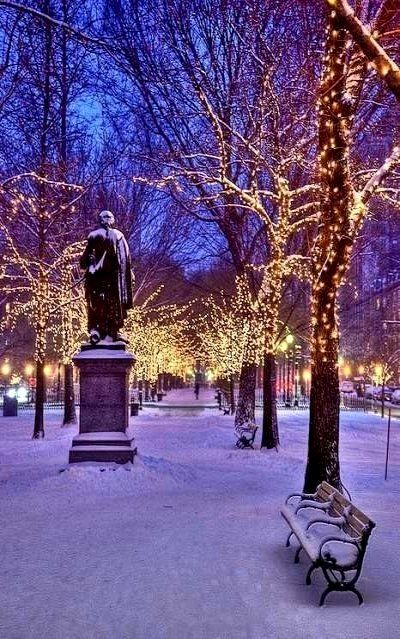 Christmas in New York ~ Central Park, NYC | Romantic winter getaways, New york christmas, Winter ...
