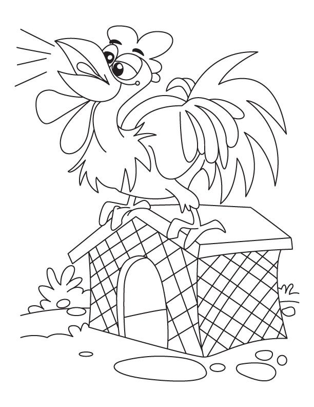 Rooster calling upper ceiling coloring pages