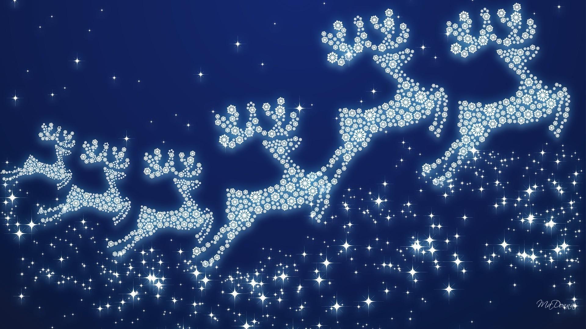 Christmas Reindeer Wallpaper