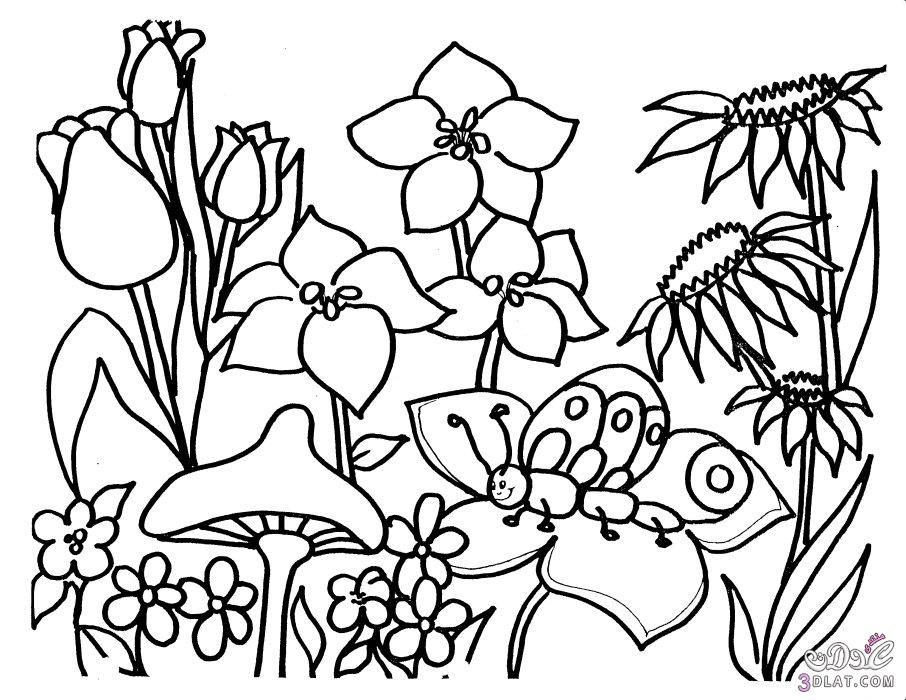 صور تلوين فصل الربيع للاطفال صور رسومات تلوين فصل الربيع للاطفال Flower Coloring Sheets Garden Coloring Pages Spring Coloring Pages