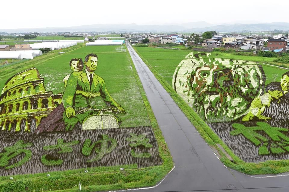 The Town Of Inakadate Each Year A Pair Of The Aomori Prefecture Town S Fields Are Used To Create Amazing Rice Paddy Art Or Tambo Art In Japanese This Ye