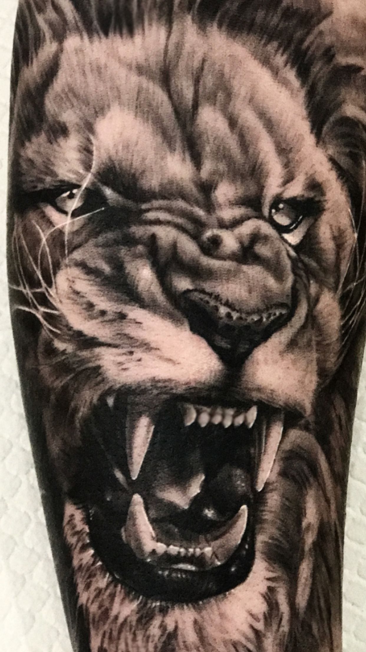 d5ca5706d $600 for a full day sitting, outer half sleeve can be completed in this time