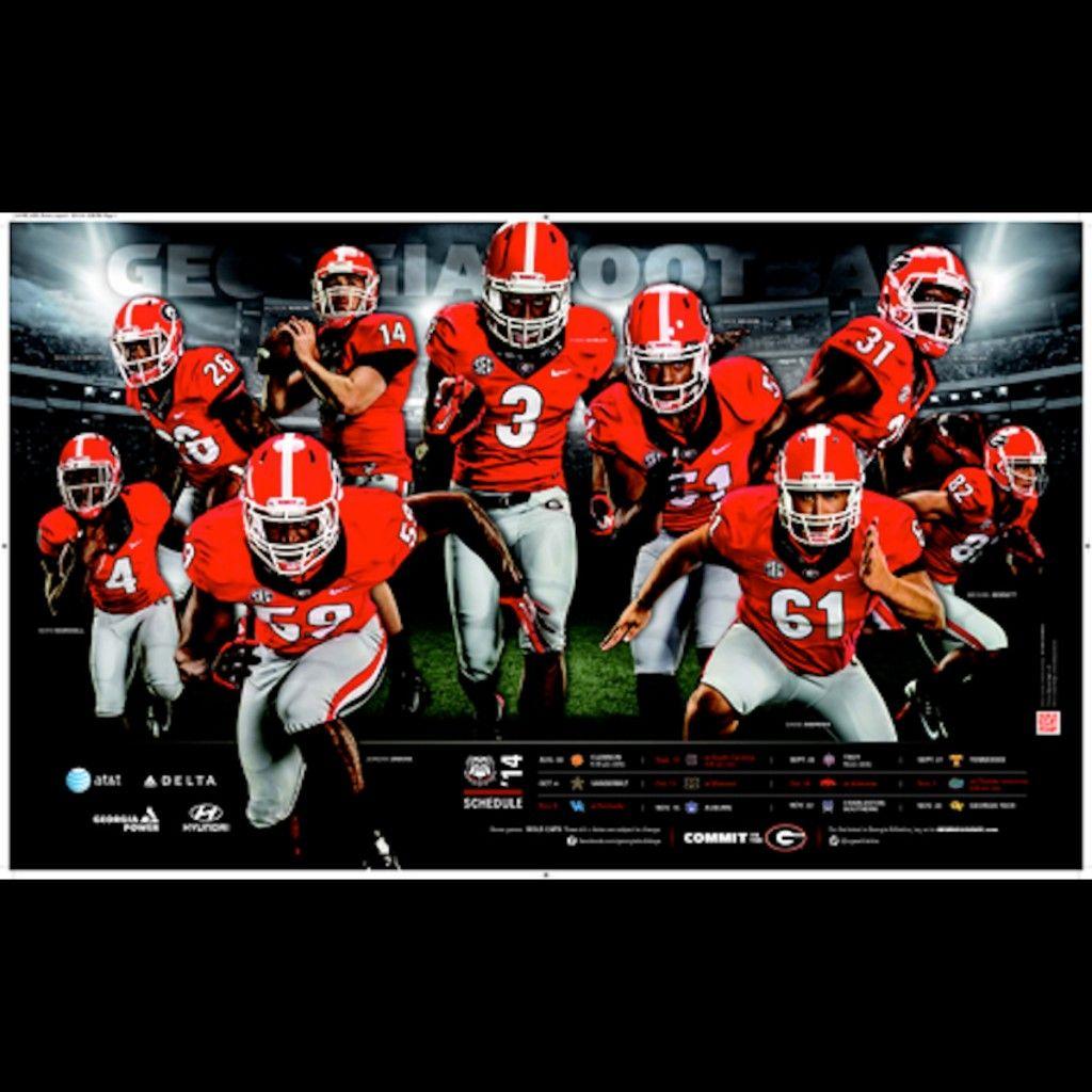 2013 SEC Helmet Schedule Sec football, Football, South