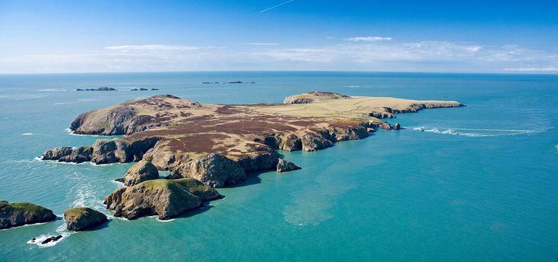 Ramsey Island, Pembrokeshire -