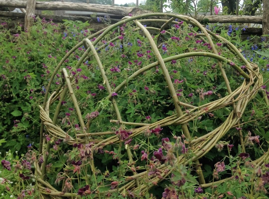 Willow Plant Supports: Domes, Pea Frames At Humble By Nature
