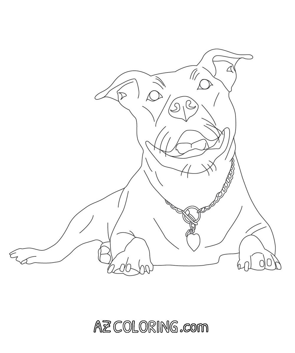 Pitbull Coloring Page | Color me in | Pinterest