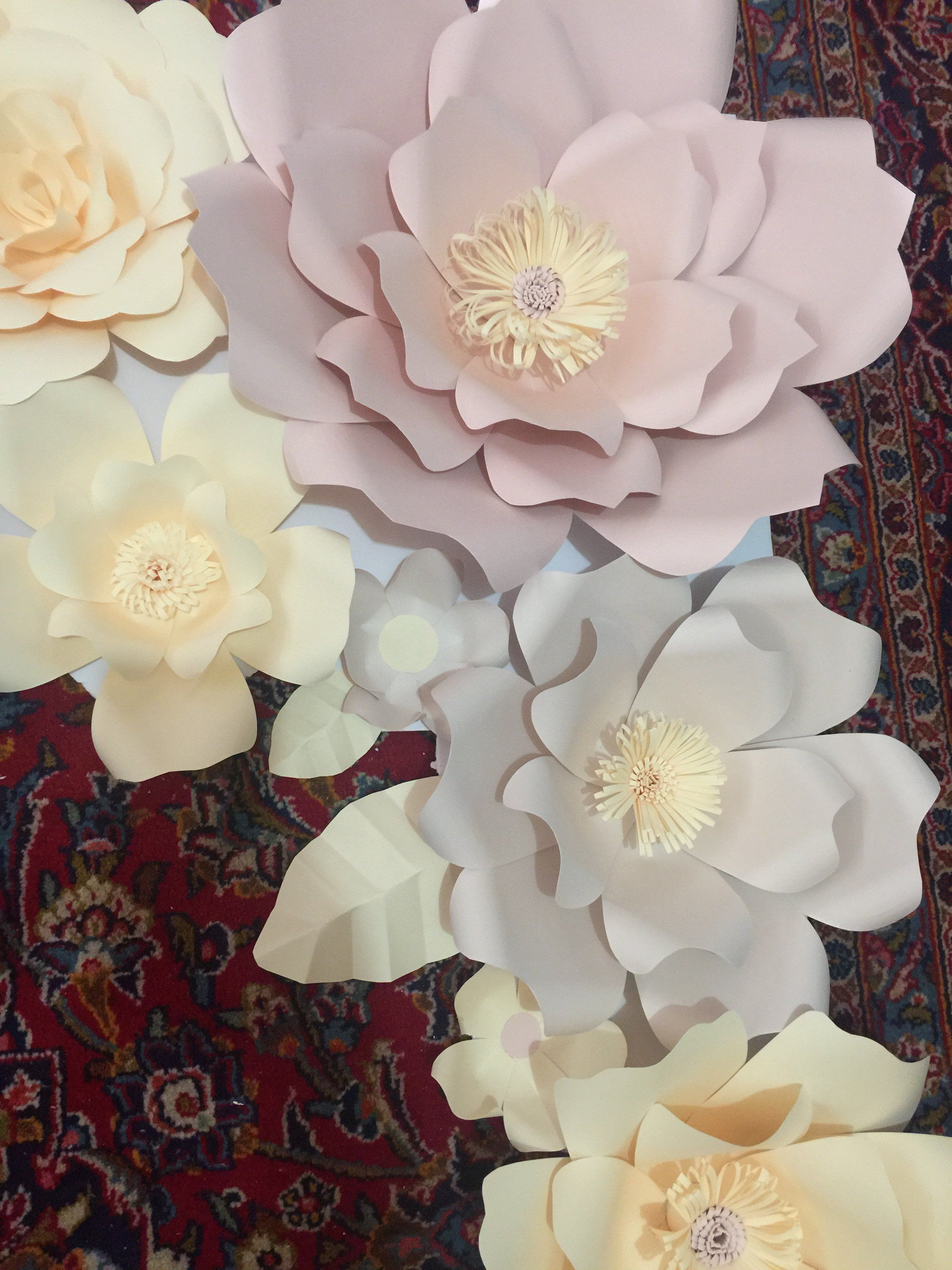 Paper flower x backdrop DIY Kit  Products  Pinterest  Backdrops