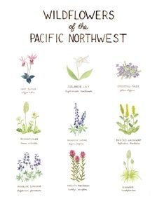 Pacific Northwest Wildflowers Art Print / Washington Art / Wildflowers Art / Pacific Northwest Art / Watercolor Art Print / Gifts for Her