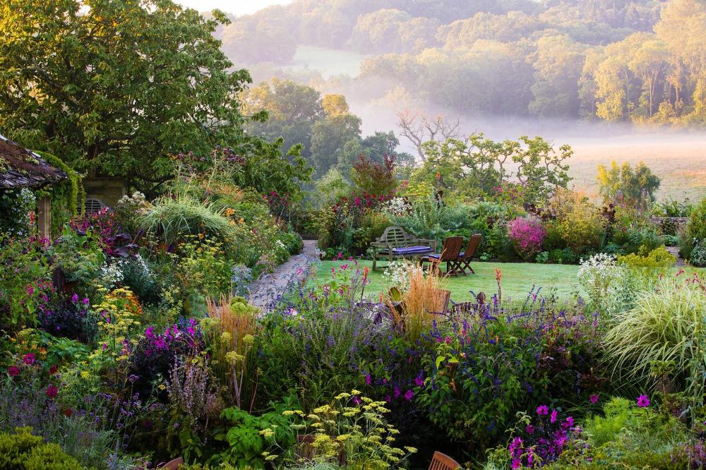 Claire Takacs Garden Szukaj W Google Beautiful Gardens Gorgeous Gardens Dream Garden