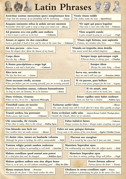 Famous Latin Phrases Poster
