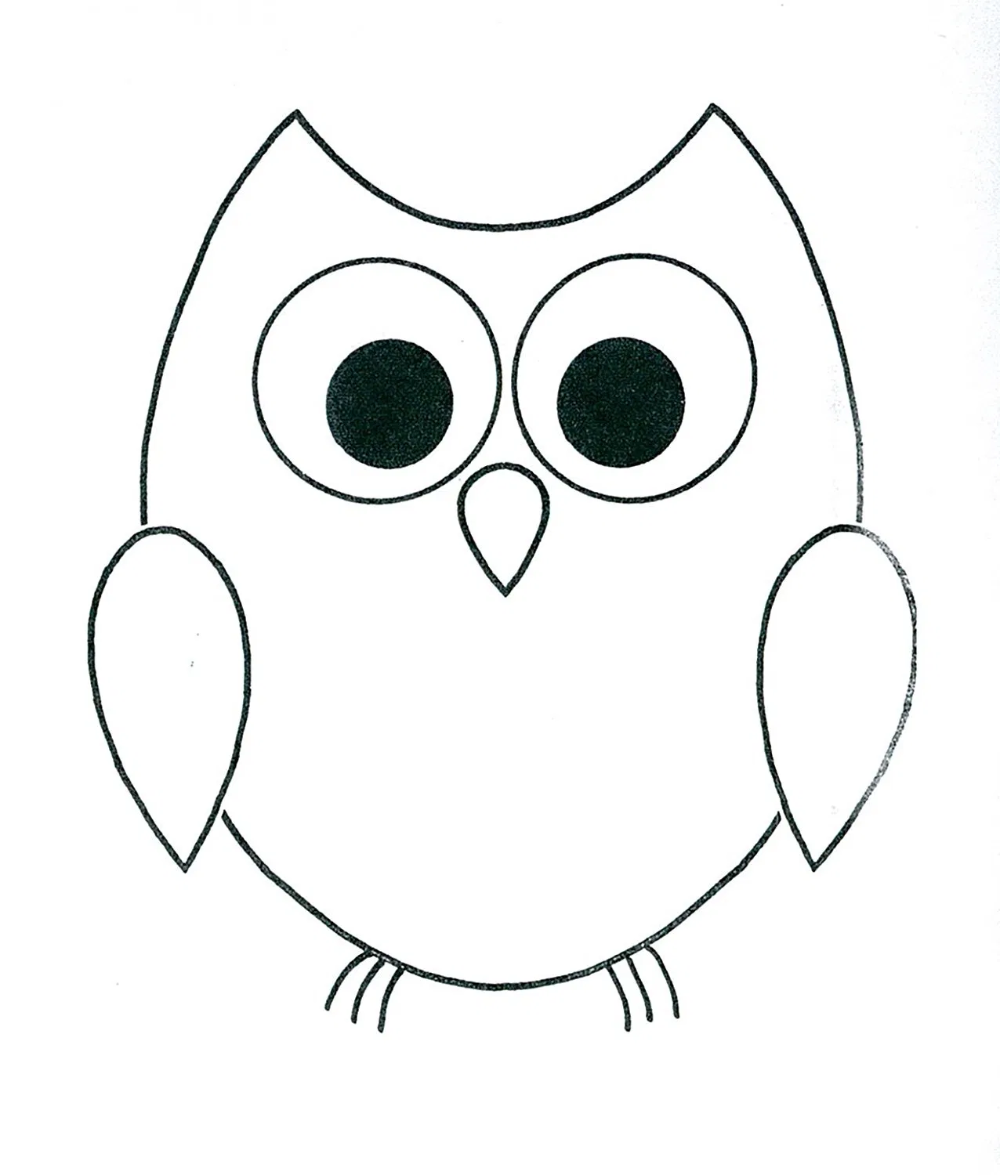 Cute Easy Owl Drawings   Hot Trending Now   Owls drawing, Owl ...