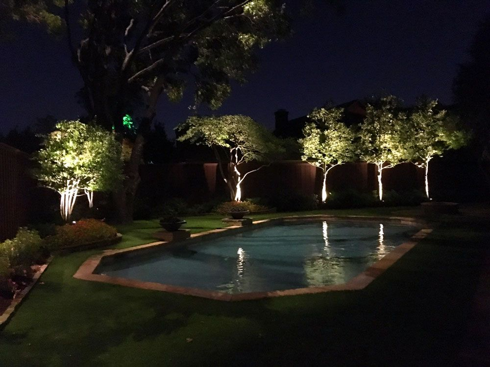 uplighting on trees at this lovely dallas home moonlighting in