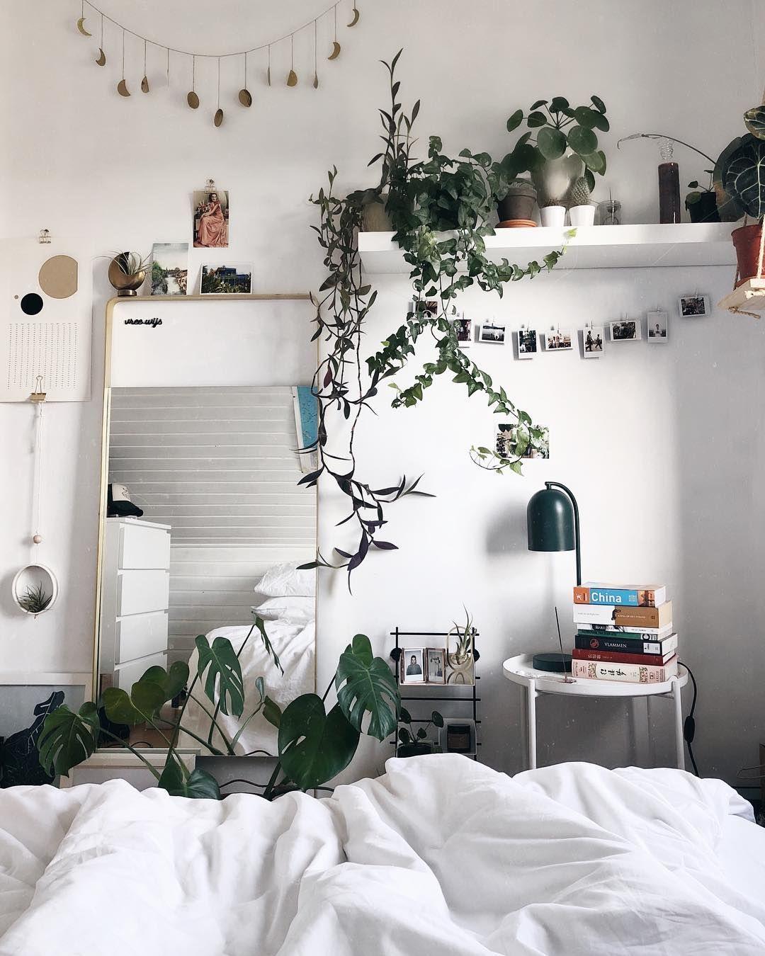 Nelson Nelplant On Instagram Room Decor Aesthetic Bedroom