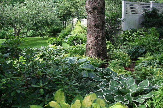 Shade Garden Design | Shade Gardening 101 | Old House, New Garden ...