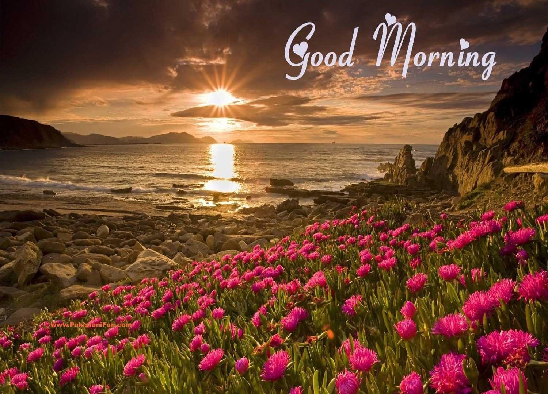 Good morning photos download hd