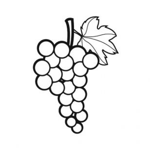 Coloriage fruit raisin champagne pinterest - Feuille de vigne dessin ...