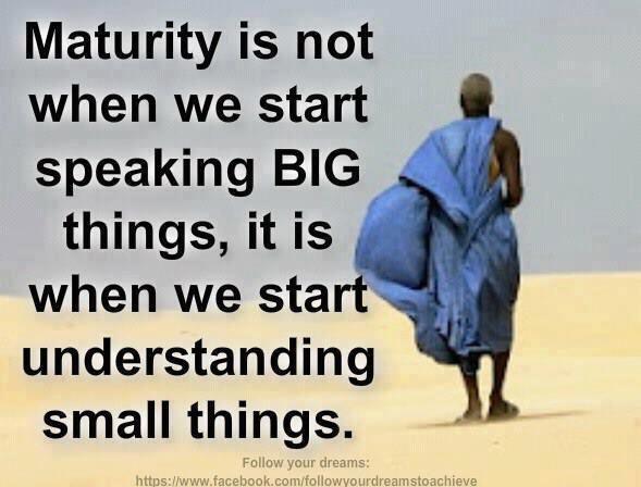 Maturity Quotes Wisdom Picture Quotes