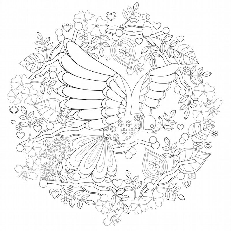 - Download & Print Sample Coloring Pages Of Faith-based Adult Coloring Books.  We'd Love To Hear From You! Share Your Coloring Experie… Coloring Pages,  Bird Coloring Pages, Free Printable Coloring Pages